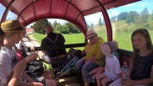 Entspannt fahren alle Wanderfreunde mit den Kremsern der Reit- und Fahrtouristik Günther zum Ausgangspunkt in den Limbacher Stadtpark zurück.